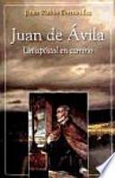 libro Juan De Ávila