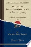 libro Anales Del Instituto Geológico De México, 1917, Vol. 1