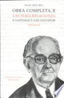 libro Las Peregrinaciones A Santiago Y San Salvador