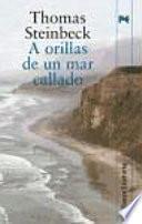 libro A Orillas De Un Mar Callado