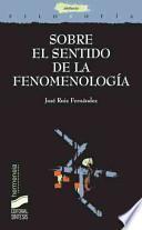 libro Sobre El Sentido De La Fenomenología