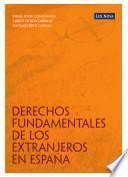 libro Derechos Fundamentales De Los Extranjeros En España (e Book)
