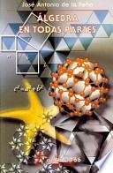 libro Álgebra En Todas Partes