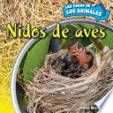 libro Nidos De Aves (inside Bird Nests)
