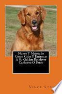 Como Criar Y Entrenar A Su Golden Retriever Cachorro O Perro / How To Raise And Train Your Golden Retriever Puppy Or Dog