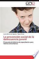La Prevención Social De La Delincuencia Juvenil